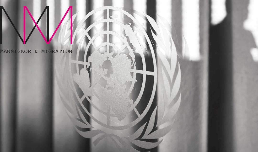 FN-kritiken mot Sverige och allvarliga hälsotillstånd